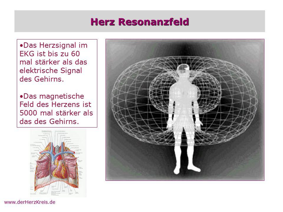 www.derHerzKreis.de Herz Resonanzfeld Das Herzsignal im EKG ist bis zu 60 mal stärker als das elektrische Signal des Gehirns. Das magnetische Feld des