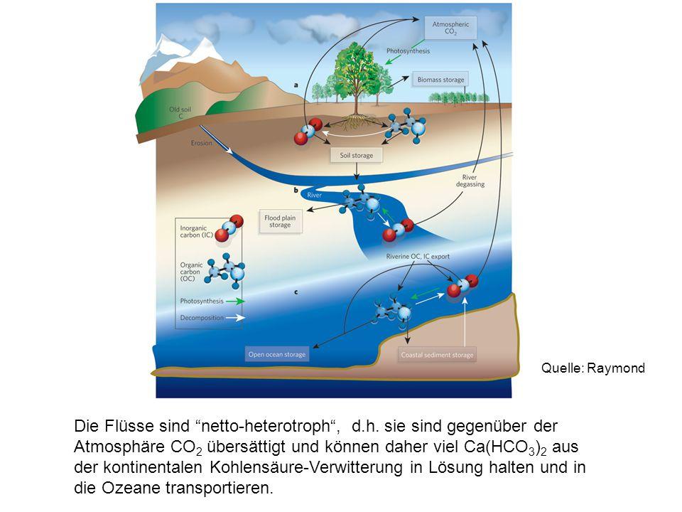 """Die Flüsse sind """"netto-heterotroph"""", d.h. sie sind gegenüber der Atmosphäre CO 2 übersättigt und können daher viel Ca(HCO 3 ) 2 aus der kontinentalen"""