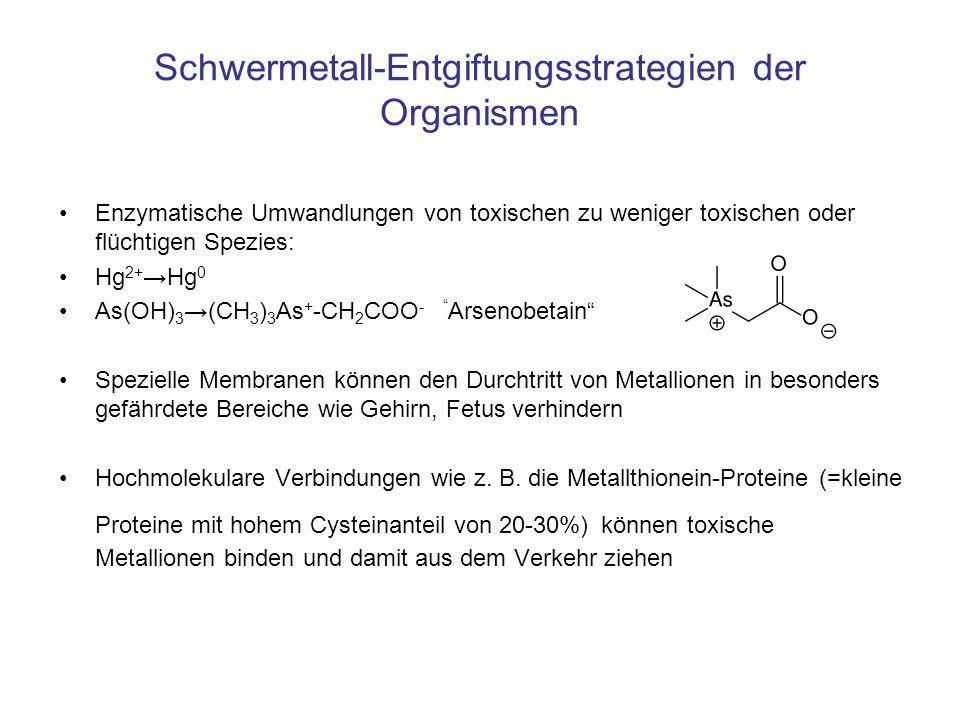 Schwermetall-Entgiftungsstrategien der Organismen Enzymatische Umwandlungen von toxischen zu weniger toxischen oder flüchtigen Spezies: Hg 2+ →Hg 0 As