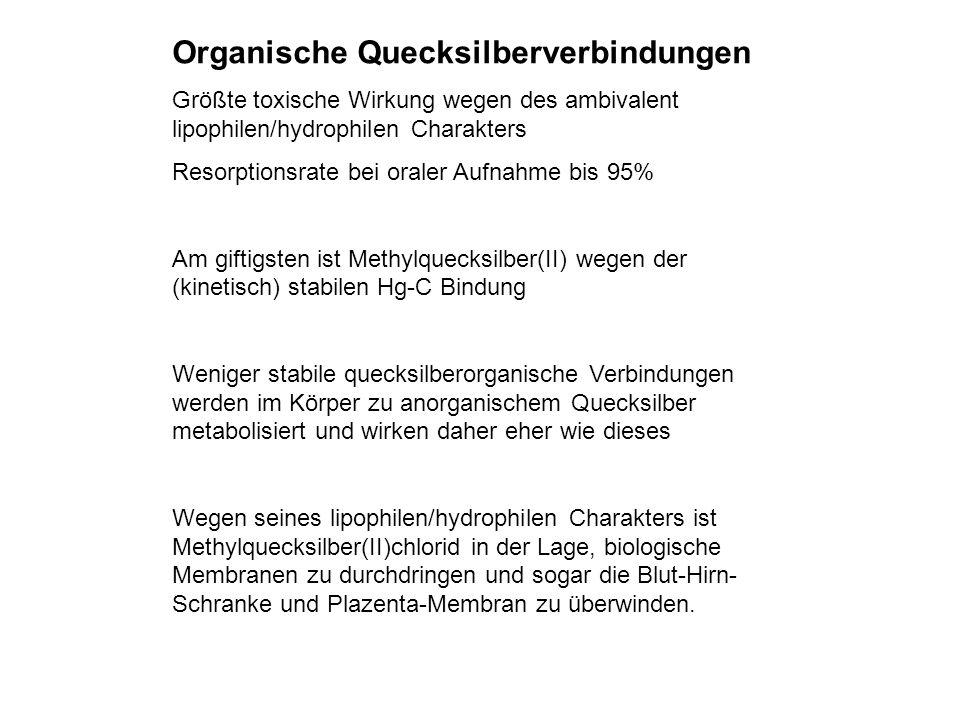 Organische Quecksilberverbindungen Größte toxische Wirkung wegen des ambivalent lipophilen/hydrophilen Charakters Resorptionsrate bei oraler Aufnahme