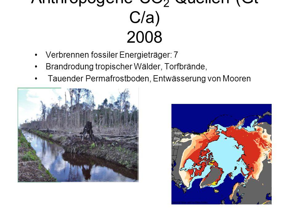 Anthropogene CO 2 Quellen (Gt C/a) 2008 Verbrennen fossiler Energieträger: 7 Brandrodung tropischer Wälder, Torfbrände, Tauender Permafrostboden, Entw