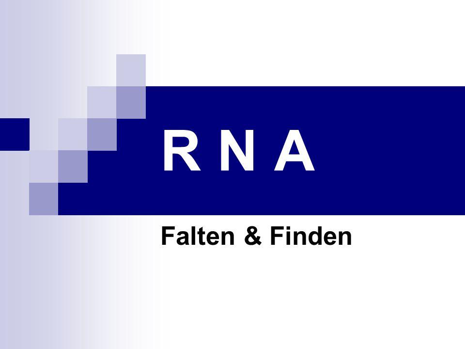 R N A Falten & Finden