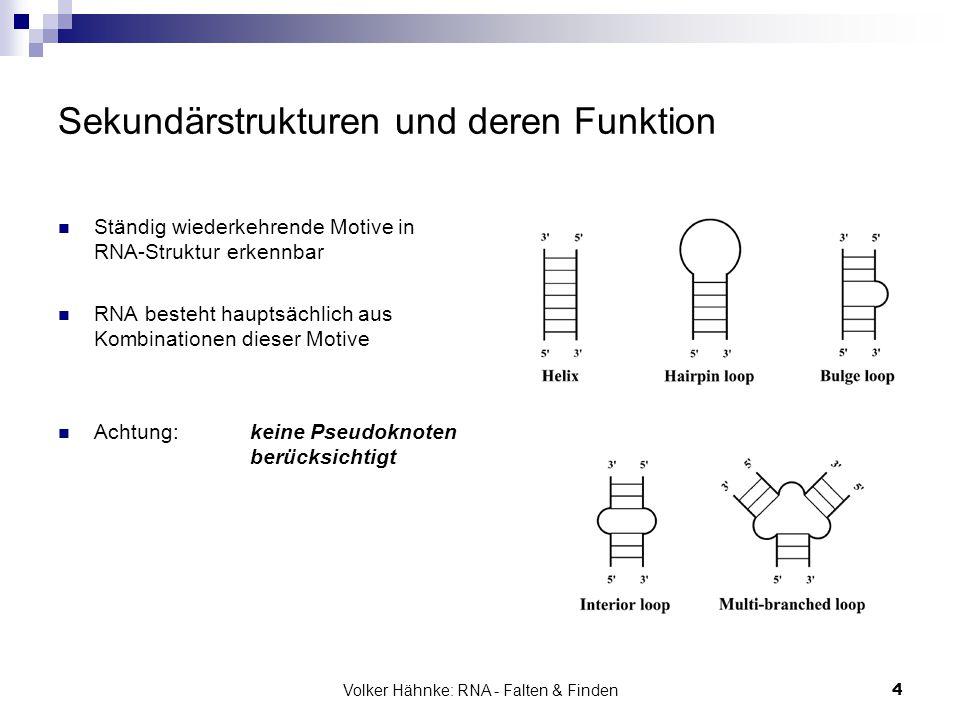 Volker Hähnke: RNA - Falten & Finden4 Sekundärstrukturen und deren Funktion Ständig wiederkehrende Motive in RNA-Struktur erkennbar RNA besteht haupts