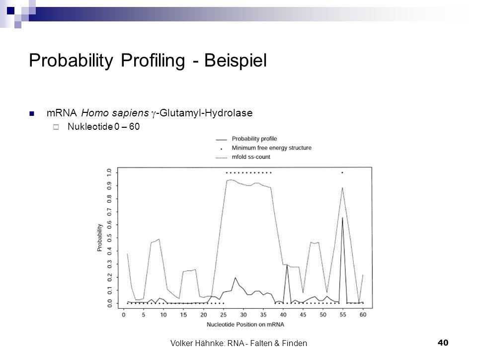 Volker Hähnke: RNA - Falten & Finden40 Probability Profiling - Beispiel mRNA Homo sapiens  -Glutamyl-Hydrolase  Nukleotide 0 – 60