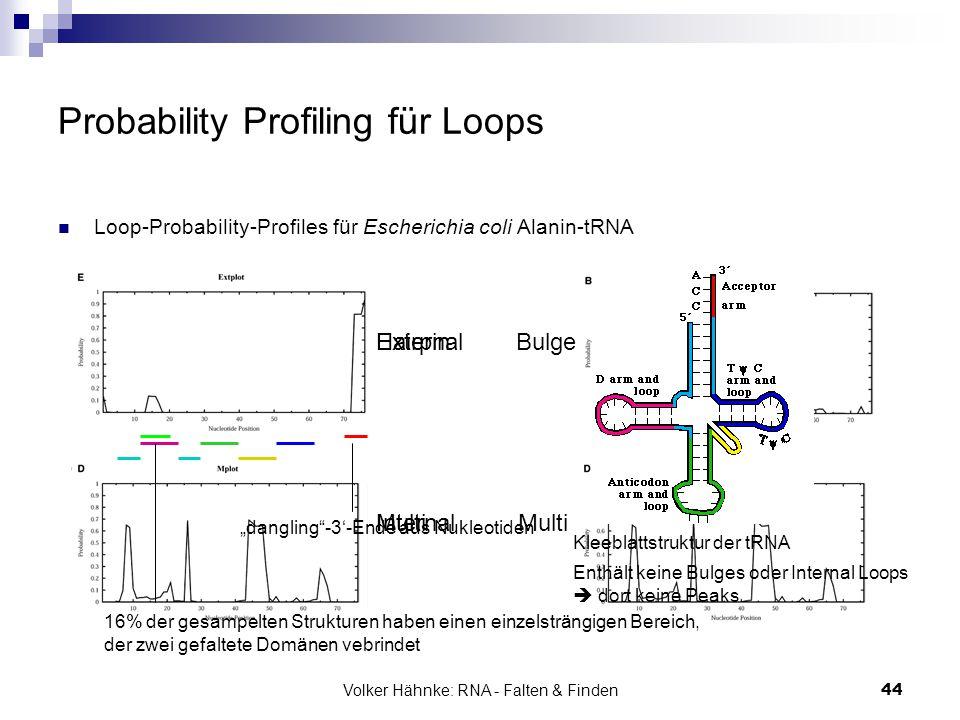 Volker Hähnke: RNA - Falten & Finden44 Probability Profiling für Loops Loop-Probability-Profiles für Escherichia coli Alanin-tRNA HairpinBulge Interna