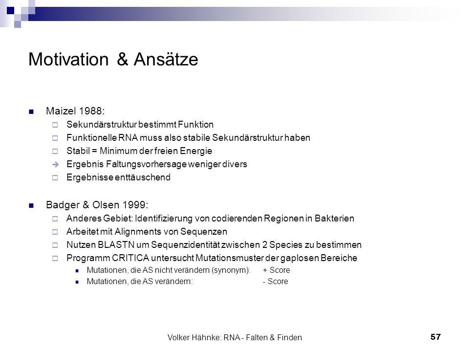 Volker Hähnke: RNA - Falten & Finden57 Motivation & Ansätze Maizel 1988:  Sekundärstruktur bestimmt Funktion  Funktionelle RNA muss also stabile Sek