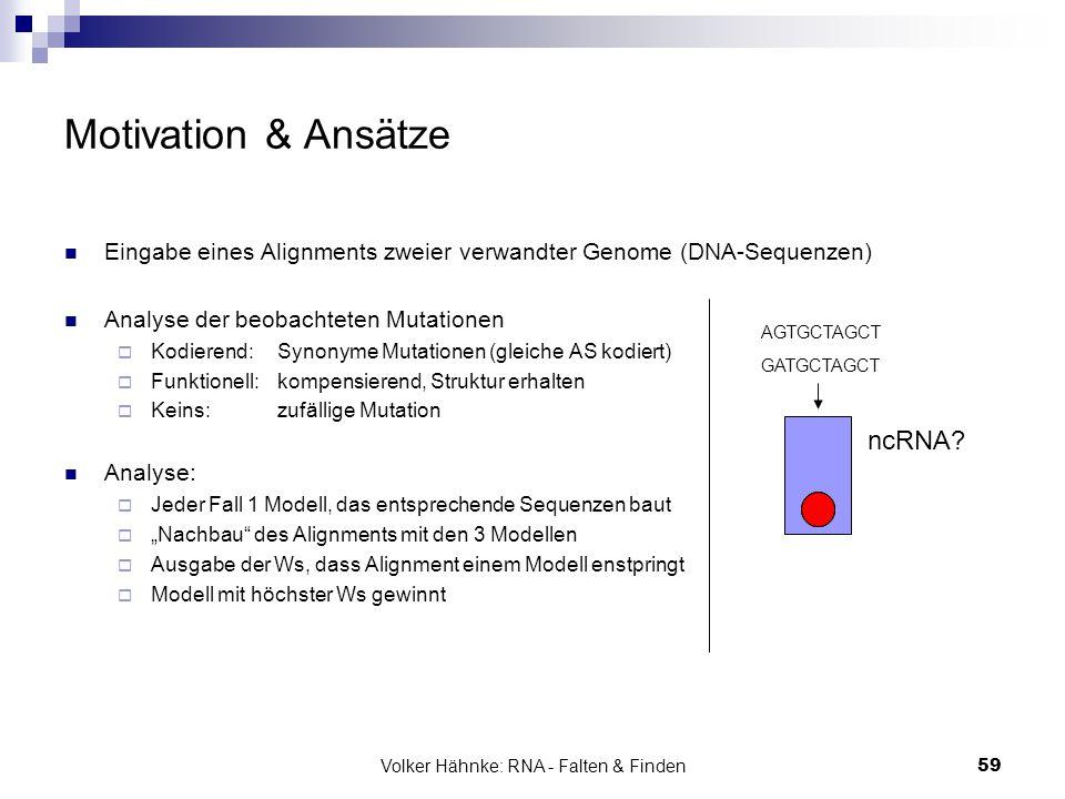 Volker Hähnke: RNA - Falten & Finden59 Motivation & Ansätze Eingabe eines Alignments zweier verwandter Genome (DNA-Sequenzen) Analyse der beobachteten
