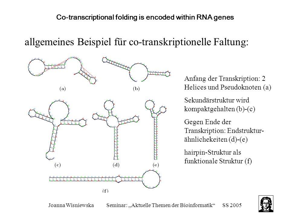 """Joanna WisniewskaSeminar: """"Aktuelle Themen der Bioinformatik""""SS 2005 Co-transcriptional folding is encoded within RNA genes allgemeines Beispiel für c"""