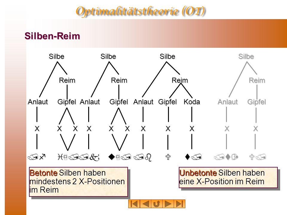 Silben-Reim Betonte Silben haben mindestens 2 X-Positionen im Reim SilbeAnlaut Reim Gipfel /fiù/ XXXSilbeAnlaut Reim Gipfel /kuù/ XXX /bUt/ X KodaSilbeAnlaut Reim Gipfel XXSilbeAnlaut Reim Gipfel /tƒsU/ XX Unbetonte Silben haben eine X-Position im Reim