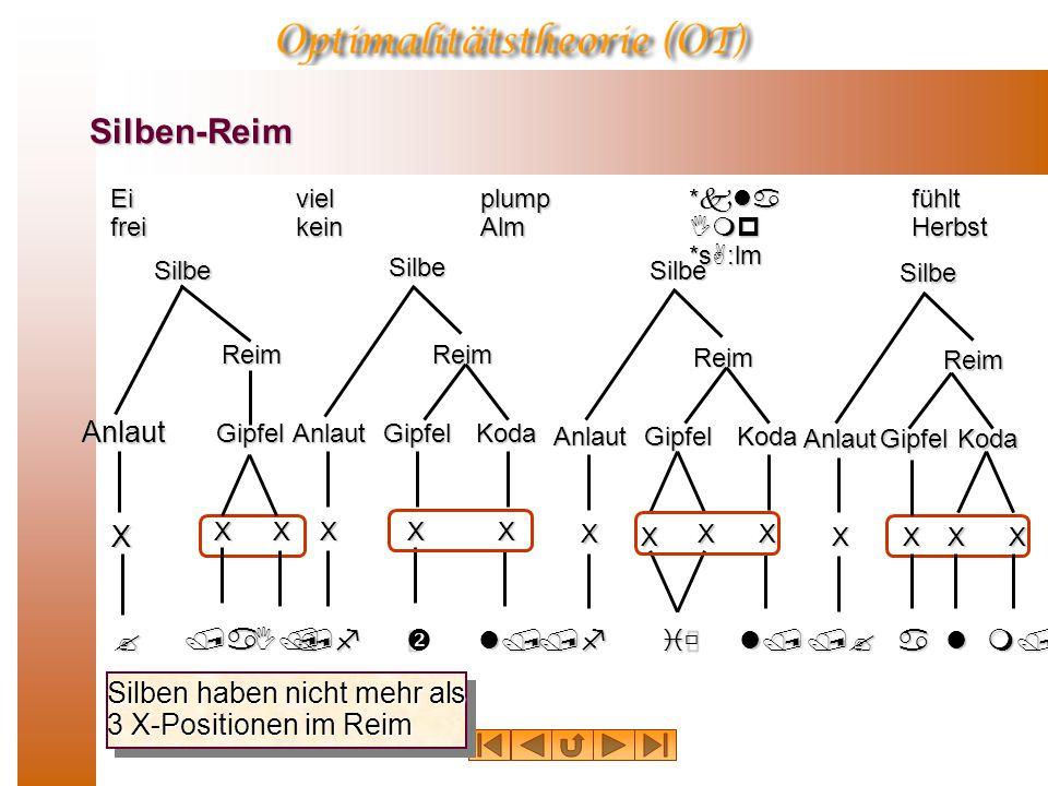 Silben-Reim /fl/ KodaSilbeAnlaut Reim Gipfel XXX Ei frei viel kein plump Alm *kla Imp *sA:lm fühlt Herbst Silben haben nicht mehr als 3 X-Positionen im Reim SilbeReim Gipfel XX Anlaut X /aI/ ?/fiùl/ X KodaSilbeAnlaut Reim Gipfel X X X Anlaut /?am/ X KodaSilbeReim Gipfel XXX l