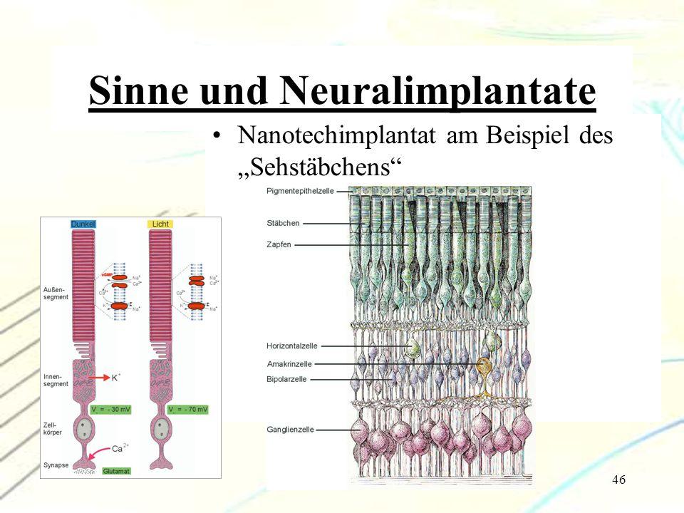 """46 Sinne und Neuralimplantate Nanotechimplantat am Beispiel des """"Sehstäbchens"""""""