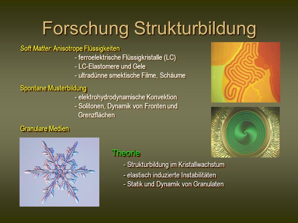 Forschung Strukturbildung Soft Matter: Anisotrope Flüssigkeiten - ferroelektrische Flüssigkristalle (LC) - LC-Elastomere und Gele - ultradünne smektis