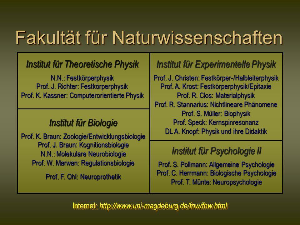 Fakultät für Naturwissenschaften Institut für Theoretische Physik N.N.: Festkörperphysik Prof. J. Richter: Festkörperphysik Prof. K. Kassner: Computer