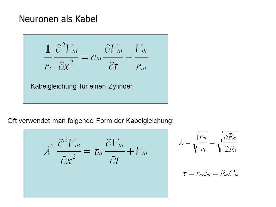 Neuronen als Kabel Oft verwendet man folgende Form der Kabelgleichung: Kabelgleichung für einen Zylinder