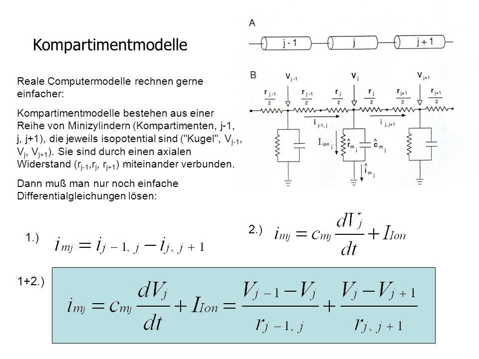 Kompartimentmodelle Reale Computermodelle rechnen gerne einfacher: Kompartimentmodelle bestehen aus einer Reihe von Minizylindern (Kompartimenten, j-1