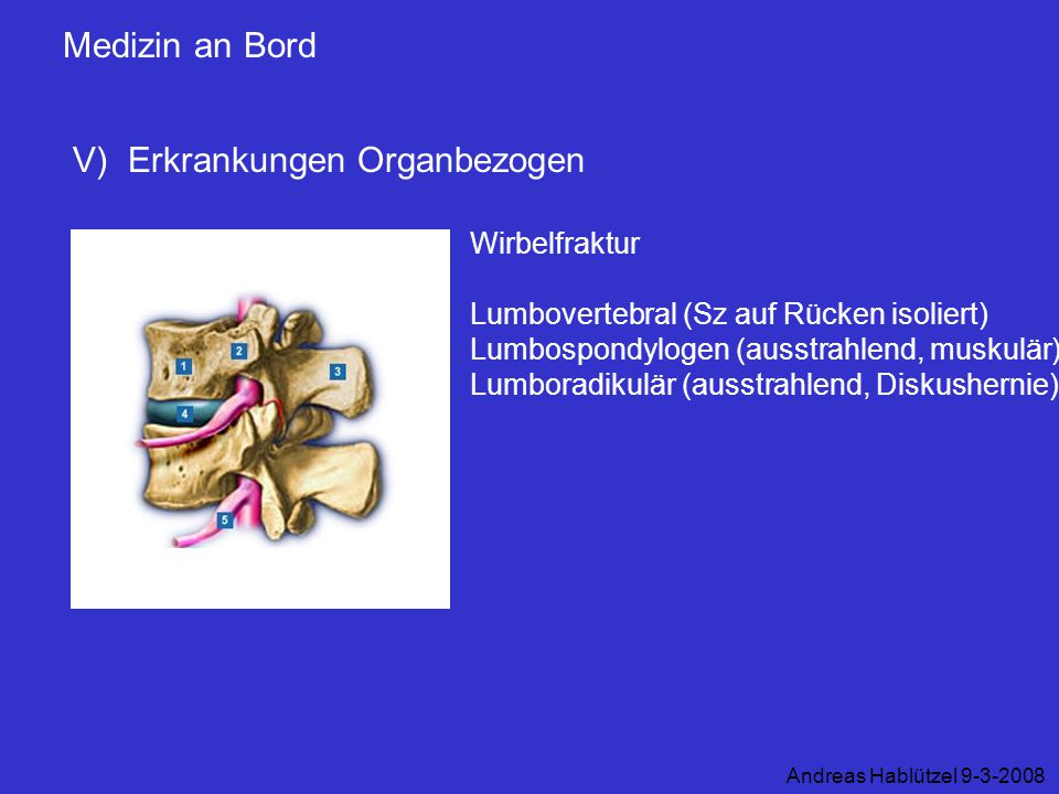 Medizin an Bord V) Erkrankungen Organbezogen Andreas Hablützel 9-3-2008 Wirbelfraktur Lumbovertebral (Sz auf Rücken isoliert) Lumbospondylogen (ausstr