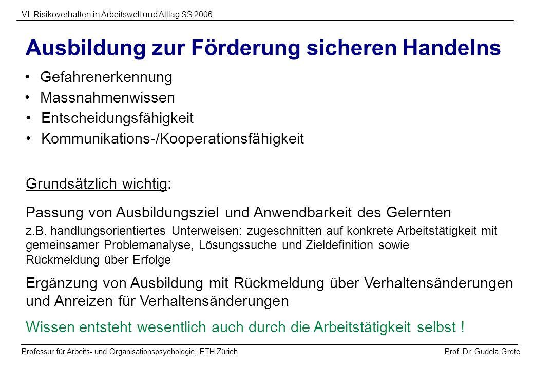 Prof. Dr. Gudela Grote VL Risikoverhalten in Arbeitswelt und Alltag SS 2006 Professur für Arbeits- und Organisationspsychologie, ETH Zürich Gefahrener