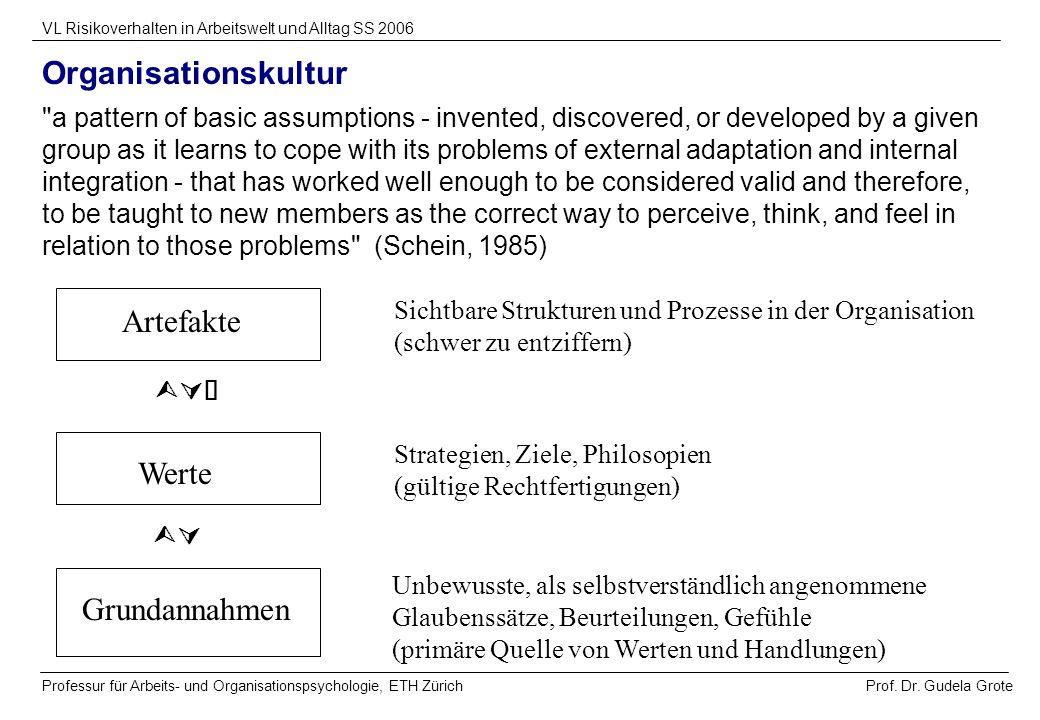 Prof. Dr. Gudela Grote VL Risikoverhalten in Arbeitswelt und Alltag SS 2006 Professur für Arbeits- und Organisationspsychologie, ETH Zürich Organisati