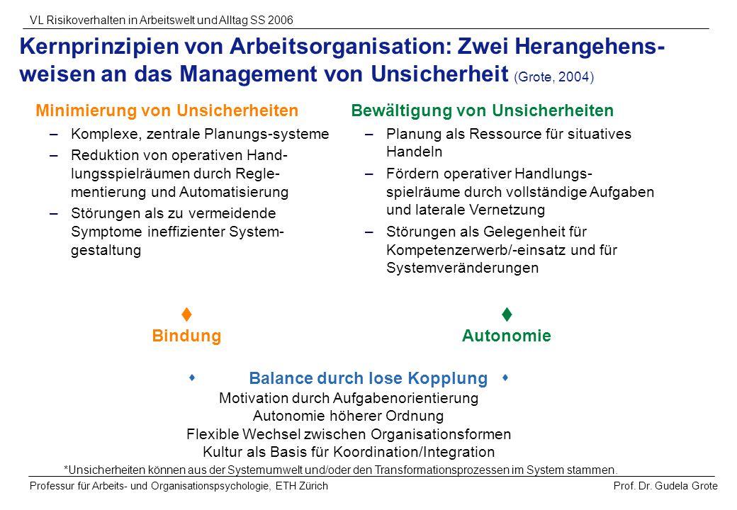 Prof. Dr. Gudela Grote VL Risikoverhalten in Arbeitswelt und Alltag SS 2006 Professur für Arbeits- und Organisationspsychologie, ETH Zürich Kernprinzi