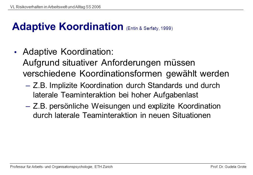 Prof. Dr. Gudela Grote VL Risikoverhalten in Arbeitswelt und Alltag SS 2006 Professur für Arbeits- und Organisationspsychologie, ETH Zürich Adaptive K
