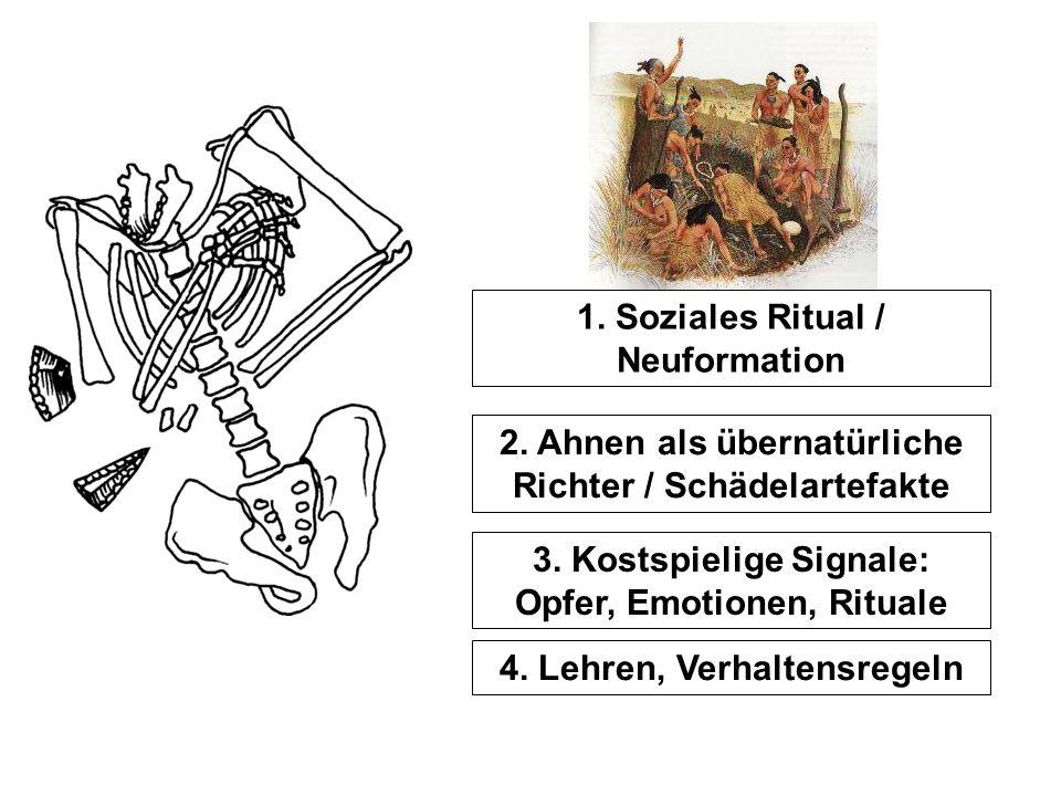 1. Soziales Ritual / Neuformation 2. Ahnen als übernatürliche Richter / Schädelartefakte 3. Kostspielige Signale: Opfer, Emotionen, Rituale 4. Lehren,
