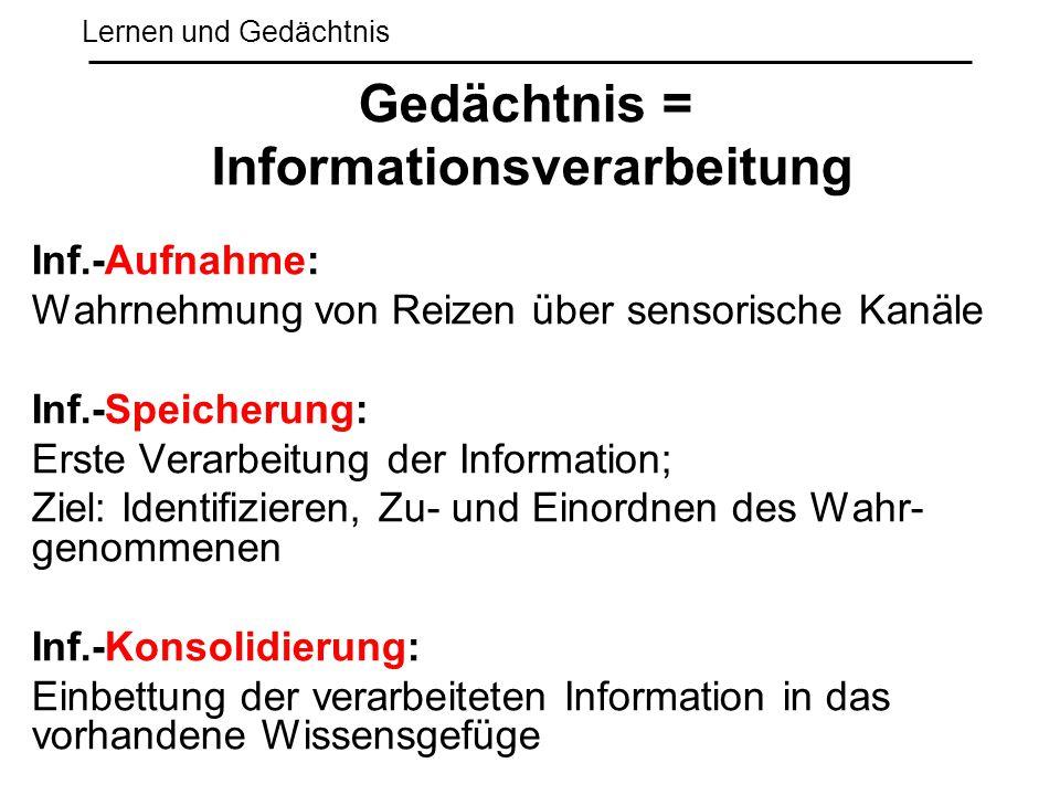 Lernen und Gedächtnis Inf.-Aufnahme: Wahrnehmung von Reizen über sensorische Kanäle Inf.-Speicherung: Erste Verarbeitung der Information; Ziel: Identi