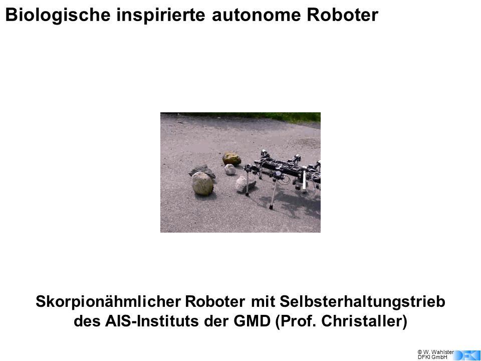 © W. Wahlster DFKI GmbH Biologische inspirierte autonome Roboter Skorpionähmlicher Roboter mit Selbsterhaltungstrieb des AIS-Instituts der GMD (Prof.