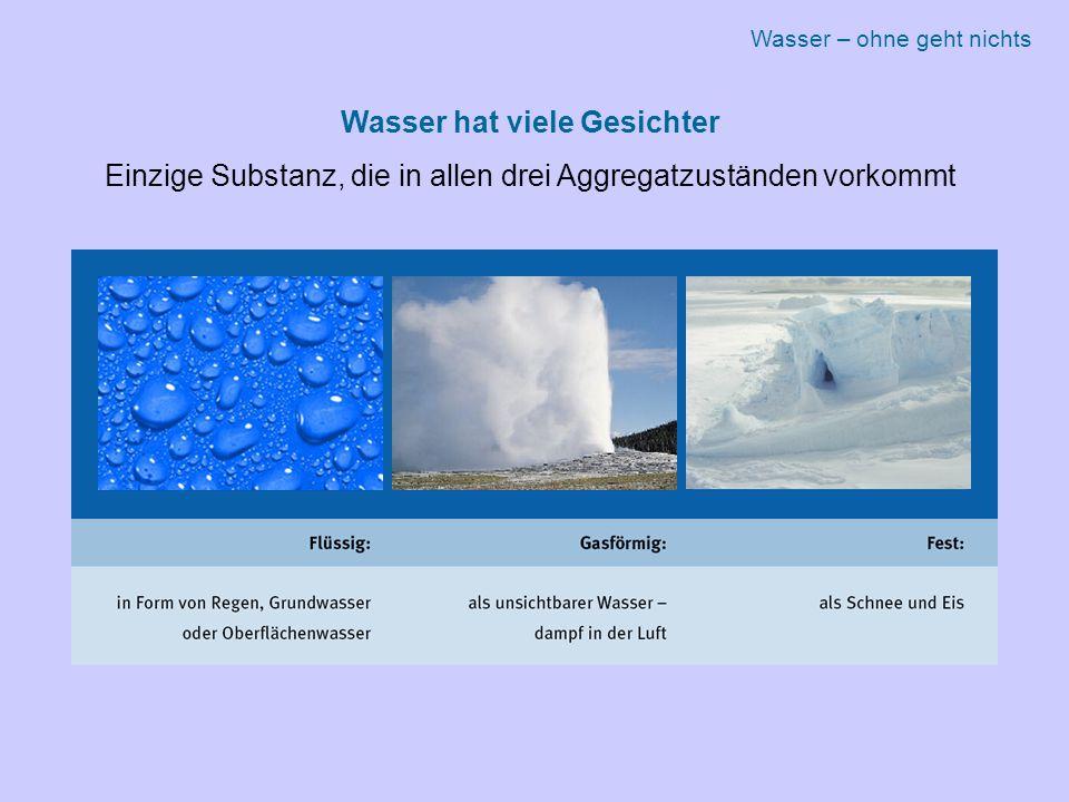 Wasser hat viele Gesichter Einzige Substanz, die in allen drei Aggregatzuständen vorkommt Wasser – ohne geht nichts