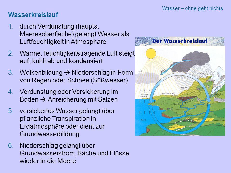 Wasserkreislauf 1.durch Verdunstung (haupts.