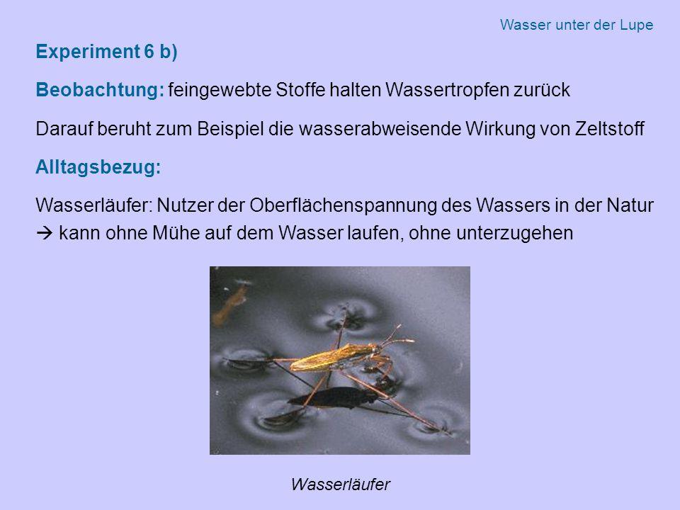 Experiment 6 b) Beobachtung: feingewebte Stoffe halten Wassertropfen zurück Darauf beruht zum Beispiel die wasserabweisende Wirkung von Zeltstoff Alltagsbezug: Wasserläufer: Nutzer der Oberflächenspannung des Wassers in der Natur  kann ohne Mühe auf dem Wasser laufen, ohne unterzugehen Wasserläufer Wasser unter der Lupe