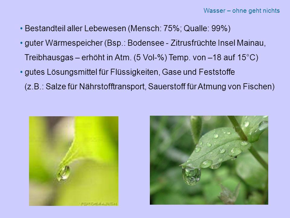 Bestandteil aller Lebewesen (Mensch: 75%; Qualle: 99%) guter Wärmespeicher (Bsp.: Bodensee - Zitrusfrüchte Insel Mainau, Treibhausgas – erhöht in Atm.
