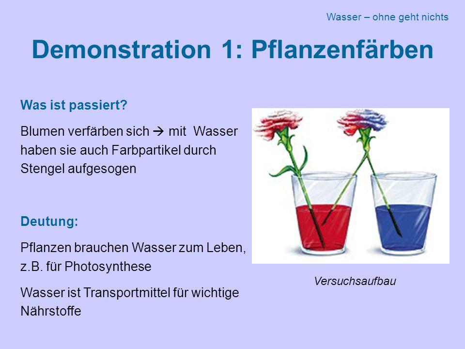 Demonstration 1: Pflanzenfärben Was ist passiert.