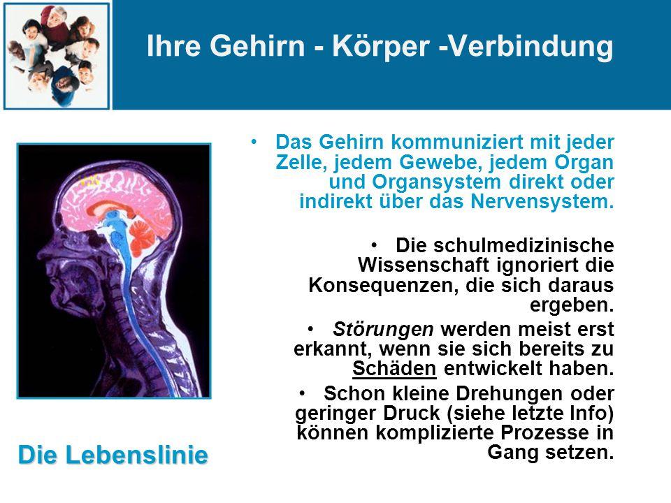 Das Gehirn kommuniziert mit jeder Zelle, jedem Gewebe, jedem Organ und Organsystem direkt oder indirekt über das Nervensystem.