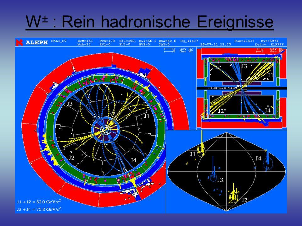 W ± : Rein hadronische Ereignisse