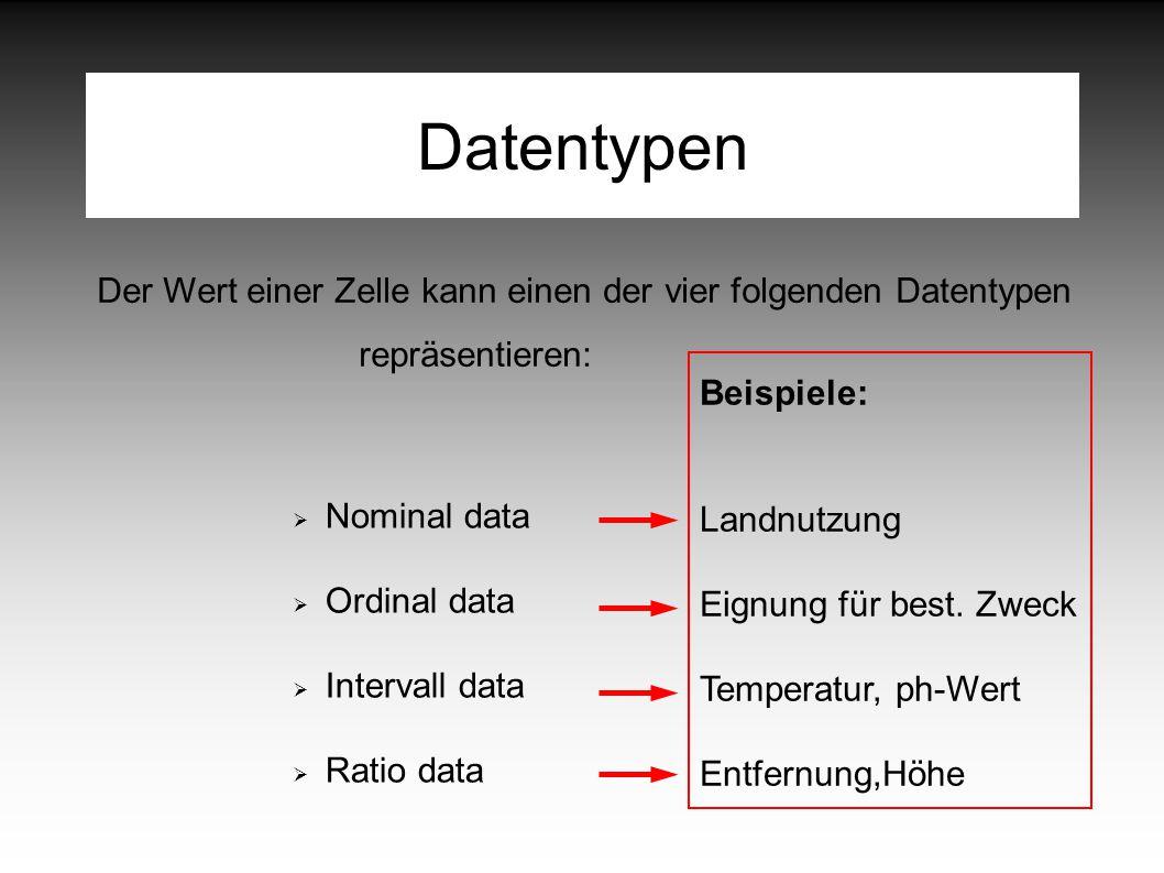 Datentypen Der Wert einer Zelle kann einen der vier folgenden Datentypen repräsentieren:  Nominal data  Ordinal data  Intervall data  Ratio data Beispiele: Landnutzung Eignung für best.
