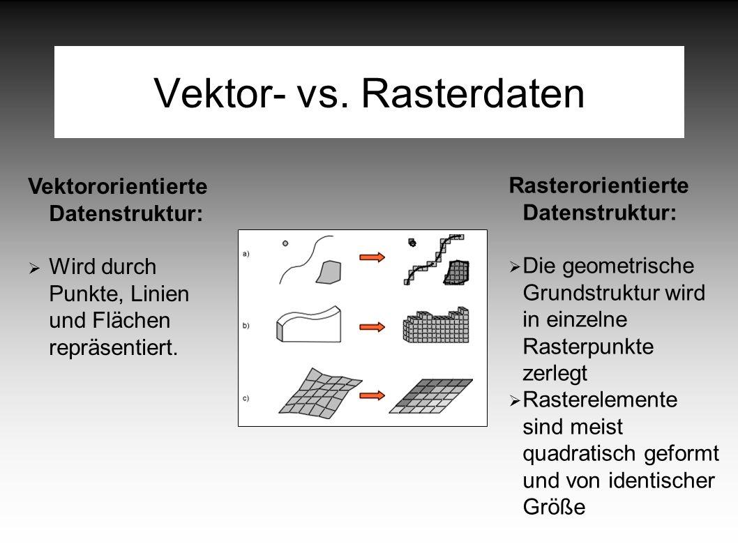 Vektor- vs.