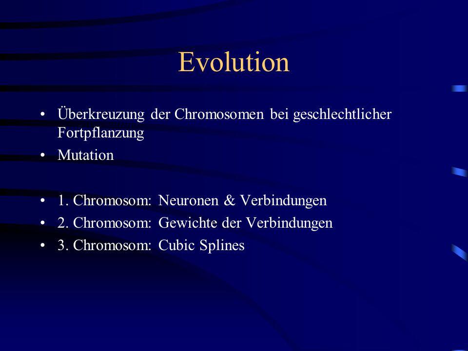 Evolution Überkreuzung der Chromosomen bei geschlechtlicher Fortpflanzung Mutation 1.