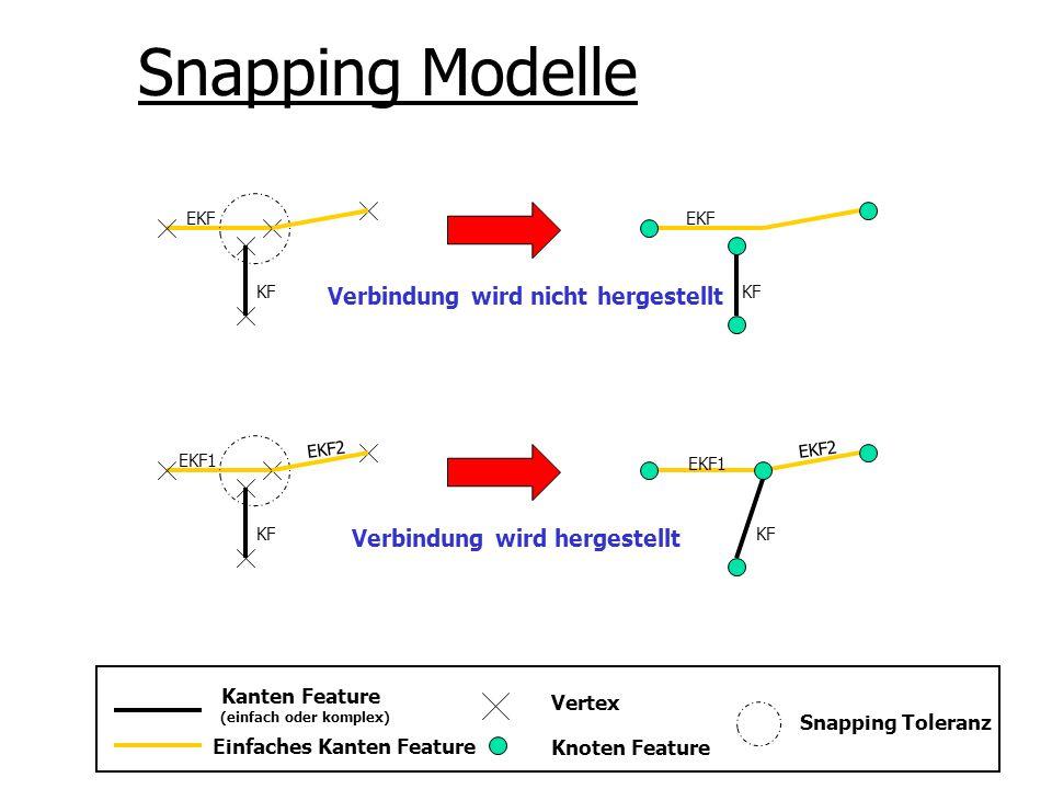 Snapping Modelle Kanten Feature (einfach oder komplex) Einfaches Kanten Feature Vertex Knoten Feature Snapping Toleranz EKF1 EKF2 KF EKF1 KF EKF2 EKF