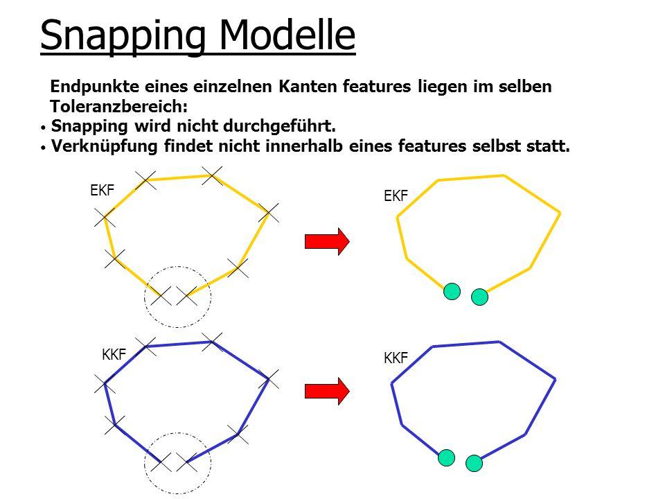 Snapping Modelle KKF EKF Endpunkte eines einzelnen Kanten features liegen im selben Toleranzbereich: Snapping wird nicht durchgeführt. Verknüpfung fin