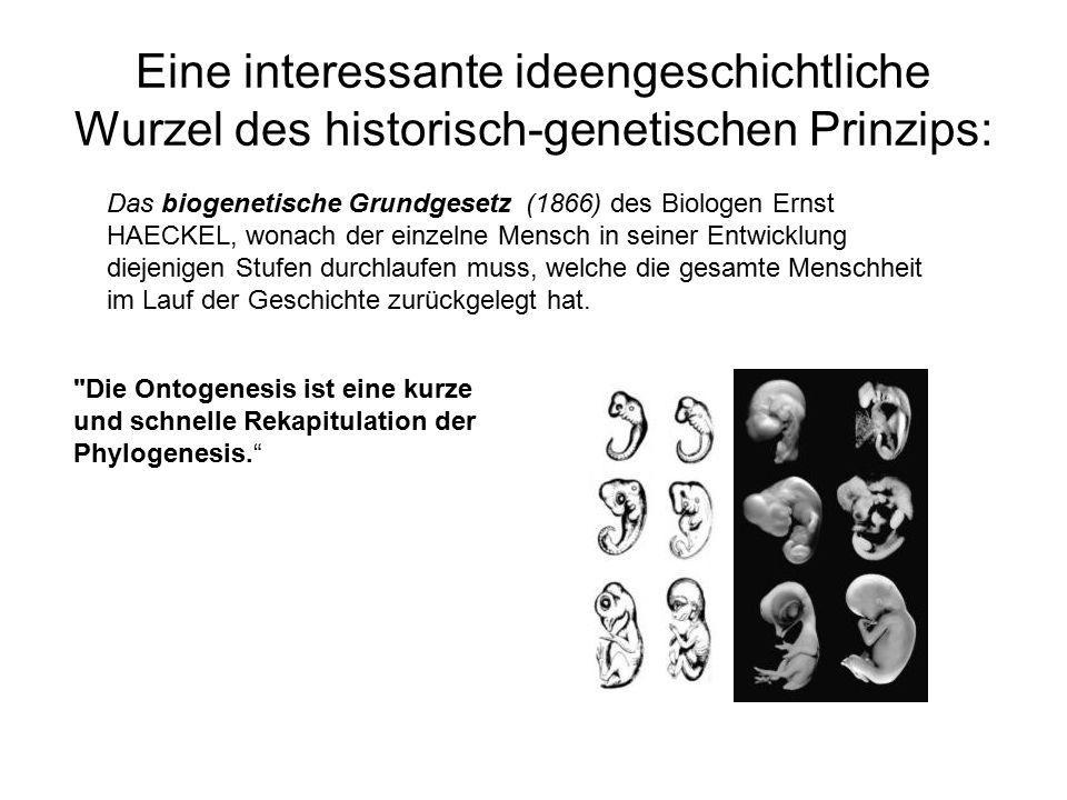"""Literatur Führer, L., """"Wurzeln, Mathematik und Nostalgie - Bedenkliches zum mathematischen Wagenschein Vortrag zur Wagenschein-Gedächtniswoche, am 2.12.96 in Frankfurt am Main Klein, F."""