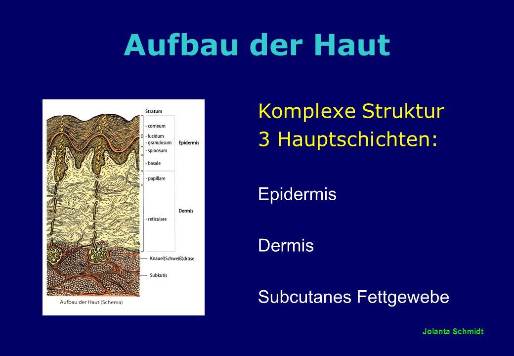 Jolanta Schmidt Aufbau der Epidermis die Epidermis besteht aus geschichtetem Plattenepithel Stratum corneum = Hornschichte ZIEGELMAUER-MODELL proteinreiche Korneozyten ^ Ziegelsteine lipophile Matrix ^ Mörtel Die Hornschicht ist ein dünnes, für Wasser und wasserlösliche Substanzen fast undurchlässiges Häutchen Stratum granulosum Stratum spinosum Stratum basale –enthält Keratinozyten, aber auch andere Zellen  Zellteilung findet hier statt, basale Keratinozyten reifen durch die Schichten nach oben hin bis zum Stratum corneum Dauer der Zelldifferenzierung: 30 Tage  2/3 der Lipide werden hier gebildet