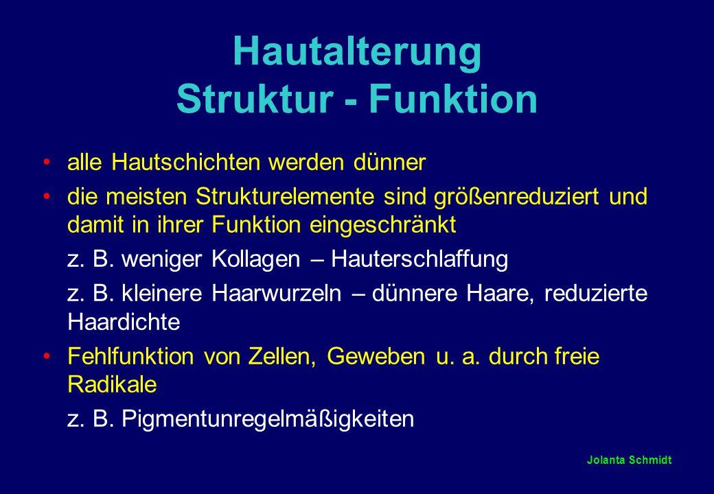 Jolanta Schmidt Hautalterung Struktur - Funktion alle Hautschichten werden dünner die meisten Strukturelemente sind größenreduziert und damit in ihrer Funktion eingeschränkt z.