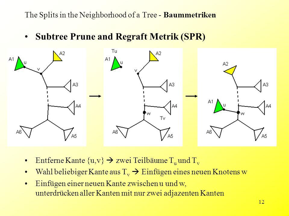 12 The Splits in the Neighborhood of a Tree - Baummetriken Subtree Prune and Regraft Metrik (SPR) Entferne Kante {u,v}  zwei Teilbäume T u und T v Wa