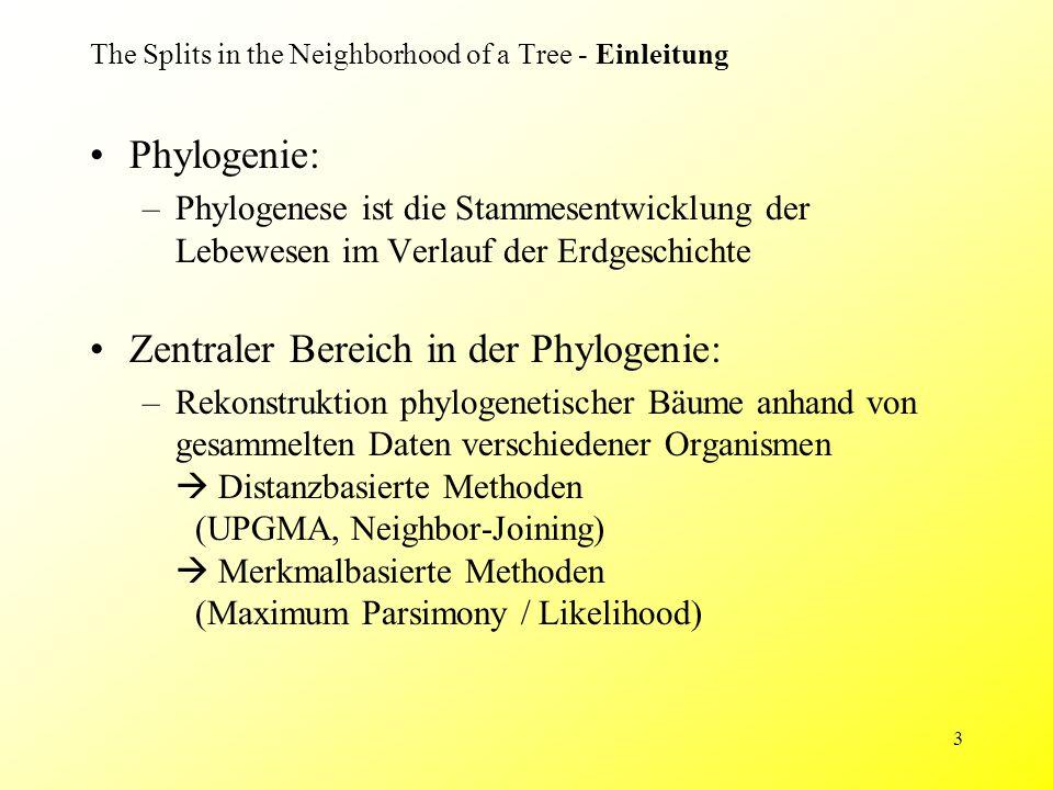 3 The Splits in the Neighborhood of a Tree - Einleitung Phylogenie: –Phylogenese ist die Stammesentwicklung der Lebewesen im Verlauf der Erdgeschichte Zentraler Bereich in der Phylogenie: –Rekonstruktion phylogenetischer Bäume anhand von gesammelten Daten verschiedener Organismen  Distanzbasierte Methoden (UPGMA, Neighbor-Joining)  Merkmalbasierte Methoden (Maximum Parsimony / Likelihood)