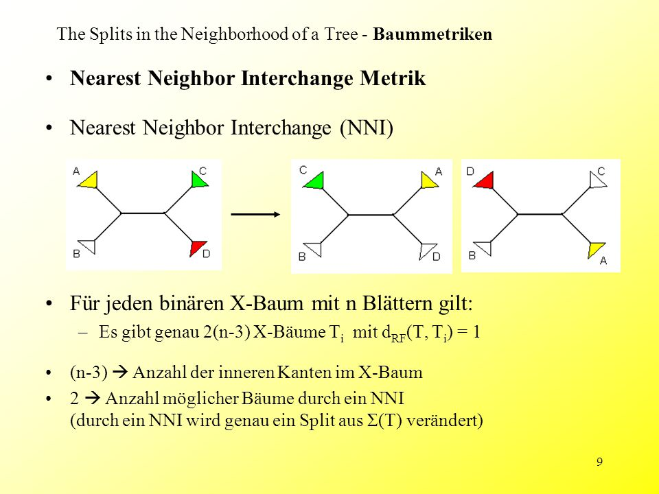 9 Nearest Neighbor Interchange Metrik Nearest Neighbor Interchange (NNI) Für jeden binären X-Baum mit n Blättern gilt: –Es gibt genau 2(n-3) X-Bäume T i mit d RF (T, T i ) = 1 The Splits in the Neighborhood of a Tree - Baummetriken (n-3)  Anzahl der inneren Kanten im X-Baum 2  Anzahl möglicher Bäume durch ein NNI (durch ein NNI wird genau ein Split aus Σ(T) verändert)