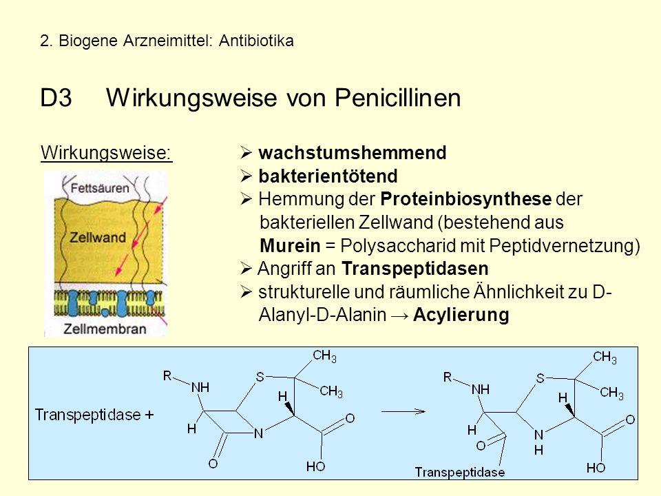 2. Biogene Arzneimittel: Antibiotika D3Wirkungsweise von Penicillinen Wirkungsweise:  wachstumshemmend  bakterientötend  Hemmung der Proteinbiosynt