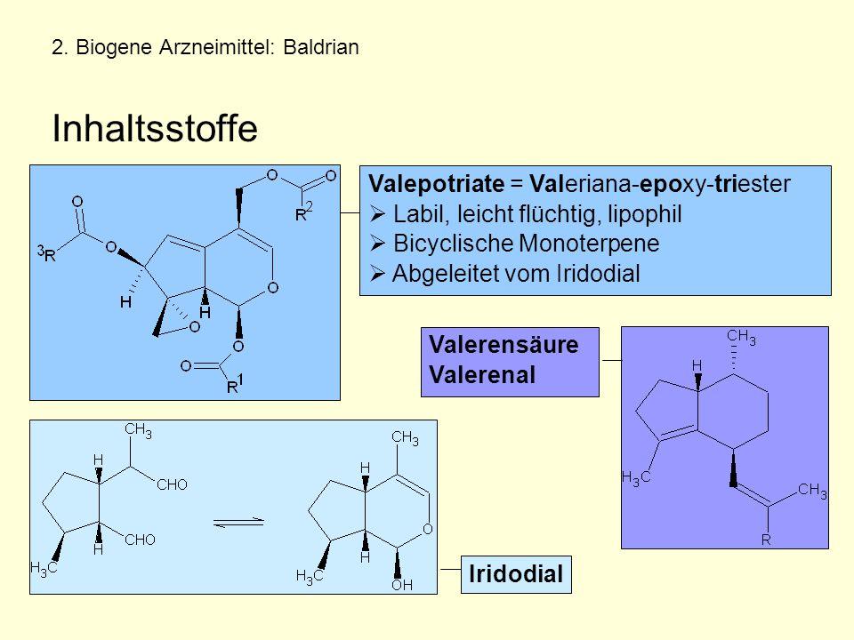 2. Biogene Arzneimittel: Baldrian Inhaltsstoffe Valepotriate = Valeriana-epoxy-triester  Labil, leicht flüchtig, lipophil  Bicyclische Monoterpene 