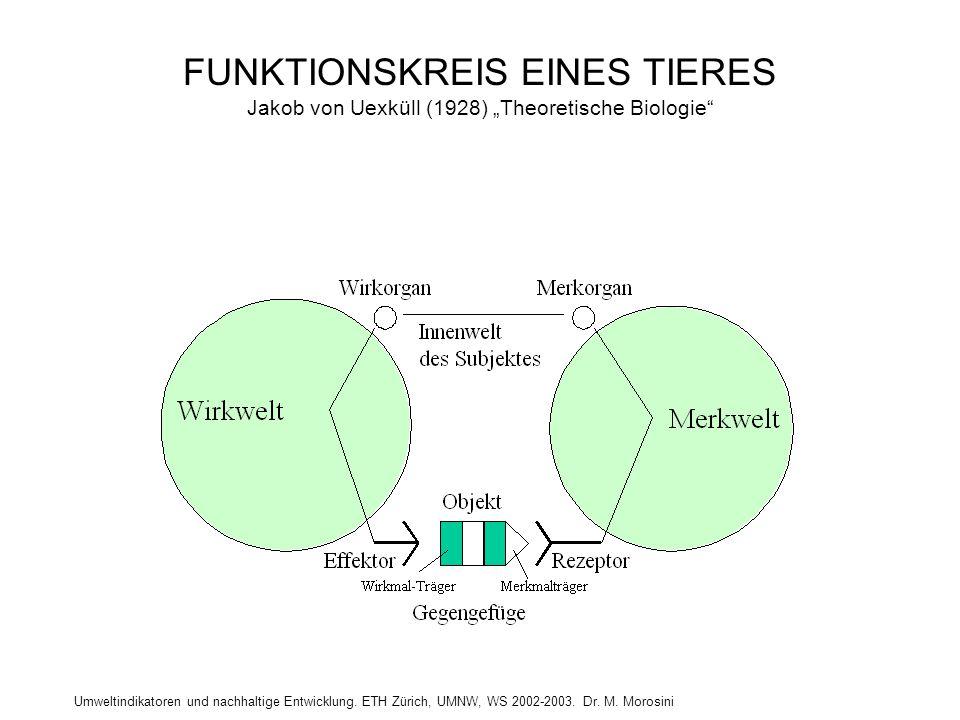 """Umweltindikatoren und nachhaltige Entwicklung. ETH Zürich, UMNW, WS 2002-2003. Dr. M. Morosini FUNKTIONSKREIS EINES TIERES Jakob von Uexküll (1928) """"T"""