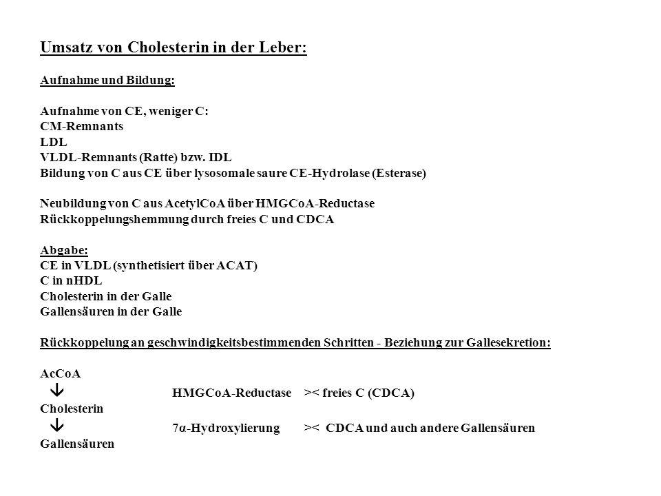 Umsatz von Cholesterin in der Leber: Aufnahme und Bildung: Aufnahme von CE, weniger C: CM-Remnants LDL VLDL-Remnants (Ratte) bzw. IDL Bildung von C au