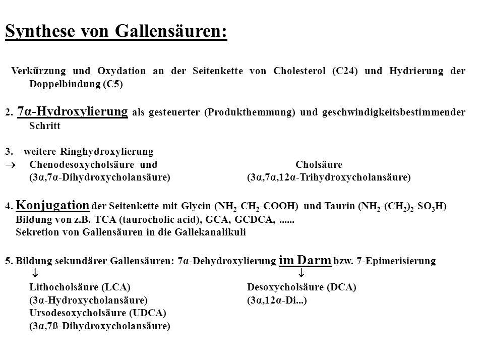 Synthese von Gallensäuren: Verkürzung und Oxydation an der Seitenkette von Cholesterol (C24) und Hydrierung der Doppelbindung (C5) 2. 7α-Hydroxylierun